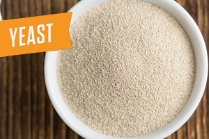 Yeast - You can't make beer without it!