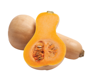 CT Butternut Squash
