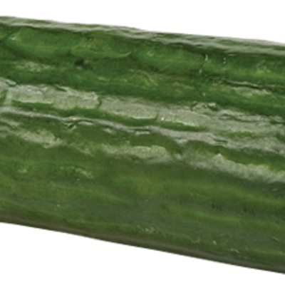 CENTRA CUCUMBER 1 PCE