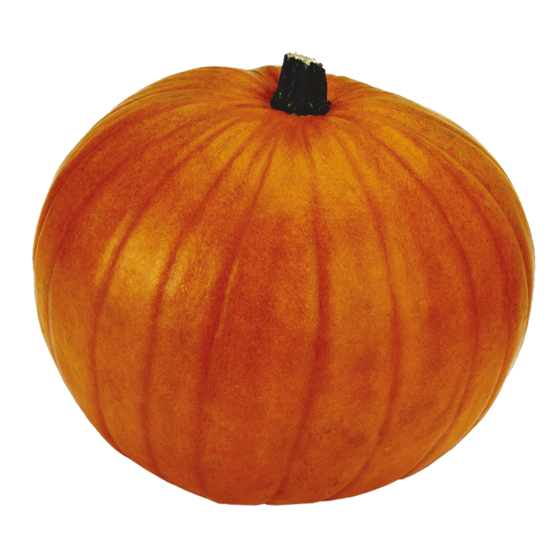 CT Pumpkin loose